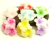 Flatback Resin Flower Cabochons - 6pcs - Yellow, Green, Sky Blue, Red, Pink Mixed Colors - 21x21x10mm - BC33