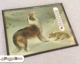 Vintage Collectible Advertising Thermometer With Collie and Lamb