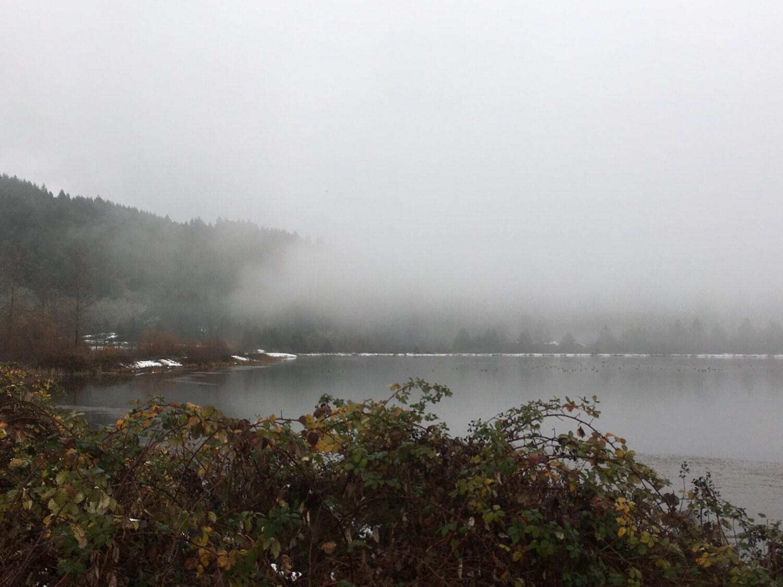 Winter Pond, Oakridge Oregon