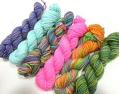 Mermaid's Closet - 6 Sock Skeins, 25 yds each, 150 yds total