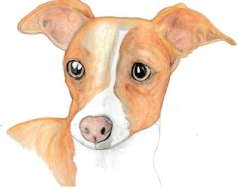 One Pet.Custom Pet Portrait. Watercolour Pet Portrait hand painted from you photo. Pet Art. Art for pet owners. Pet Memorial Art. Gift Idea.