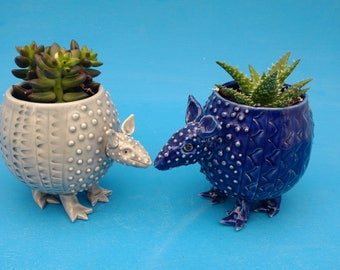 Large Armadillo, Planter, Succulents, Air Plants,  Mother's Day