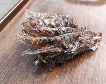 Dragon , Leopard Skin Jasper, Copper wrapped Titanium Crystal, 14 oz. approx ,Spiritual guidance,  psyche