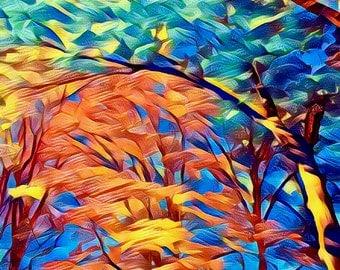 Shenandoah, Fall 2016 - Fine Art Canvas, 30x30