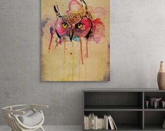 Animal Kingdom - Owl