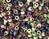 ON SALE Size 6/0 Miyuki Seed Bead Mix - 17 grams - Picasso Mix 1 - 928