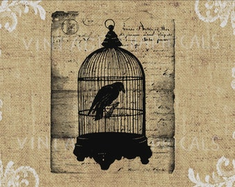 Raven Birdcage Halloween Instant graphic download image for iron on fabric transfer burlap decoupage scrapbook pillow card tote No. gt278