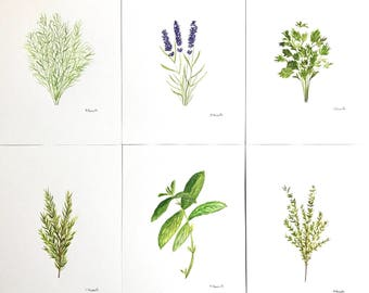 Set of 6 Original watercolours Herbs art Herbs paintings Botanical plants Rosemary Lavender Dill Thyme Parsley Basil 7 x 10 inch each