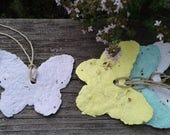 4 Herb Seed Paper butterflies made with plantable paper, annual herbs, basil seeds, cilantro seeds, parsley seeds, chives seeds