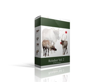Real Reindeer Collection TWO  Png Photoshop Files