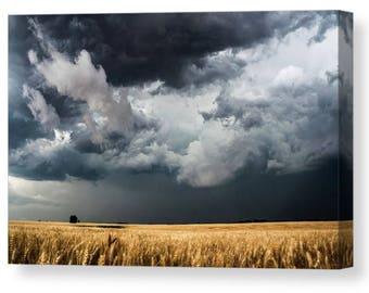 Fine Art Canvas, Kansas Fields, Gallery Wrap, Canvas Gallery Wrap, Kansas Canvas, Fine Art Nature, Wheat Fields, Cloud Canvas, Golden Wheat