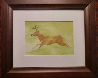 Whitetail deer watercolor