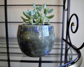 Blue succulent planter