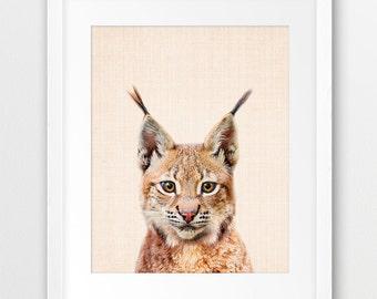 Bobcat Lynx Print, Woodlands Animal Wall Art, Nursery Decor, Cute Baby Animal, Bobcat Photo, Nursery Animal, Kids Room Decor, Printable Art