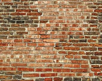 Vinyl Backdrop Red Brick Wall / Old Red Brick Wall Photography Backdrop (V0909)