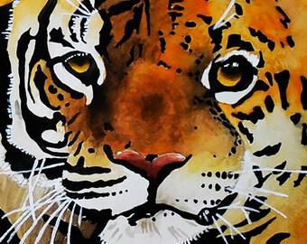 Tiger/Leopard