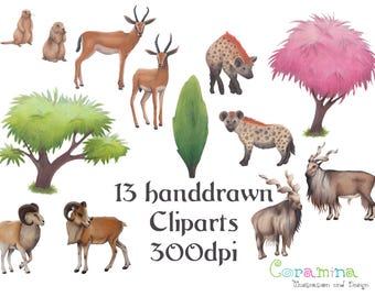 13 handdrawn animal cliparts