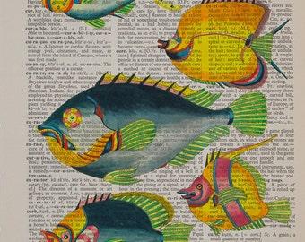 Vintage Fish Print, Dictionary Art Print, Hand painted fish, Marine Life Colorful Fish Wall Art Home Decor da1392