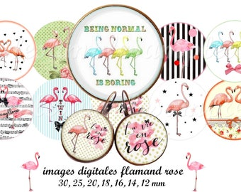 Digital collage sheet Flamingo, flamingo digital bottle cap, printable images flamingo, one inch circle, instant download