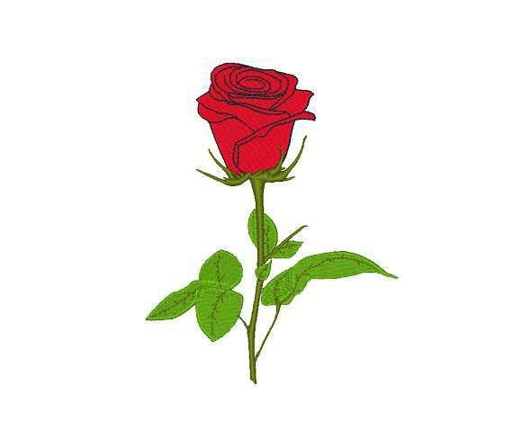 Red rose machine embroidery design designs