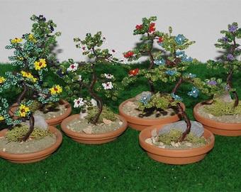 Pair of bonsai in earthen pot