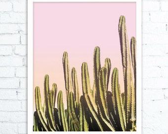 Cactus Wall Art Print, Desert Cactus Photo,  Cactus Print, Arizona Photography, South Western Decor, Cactus Art, Cactus Print, Cactus ART
