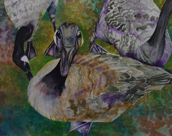 Purple Geese Greeting Cards, set of 4