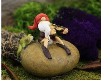 Fairy Garden  - Garden Gnome Fiddling With Frog - Miniature