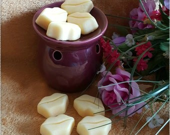Choose your own scent! - Soy Wax Lips Melts by Melti-verse - Mouths, Unique, Novelty Wax Melts