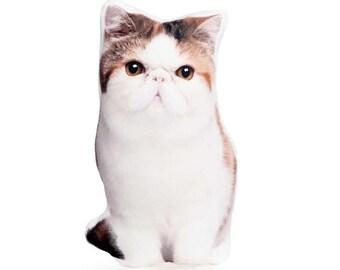 Exotic Shorthair, Cat Lovers, Cat Gift For Mother, Teen Girl Gift, Girls Room Decor, Cute Cat Gift, Whimsical Cat, Cat Pillow Cat Cushion