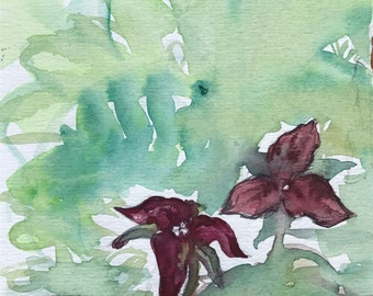 Trillium Study - original watercolor sketch