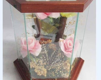 3 X vintage TAXIDERMY BUTTERFLIES in hexagonal glass & wood case with flowers