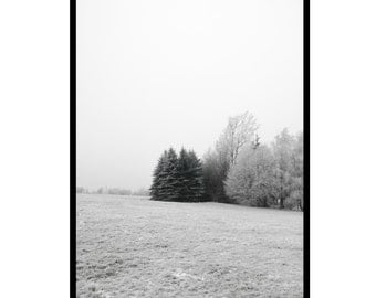 winter wonderland - 50x70/A1 Artprint - Poster