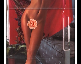 """Mature Playboy August 1980 : Playmate Centerfold Victoria Cooke Gatefold 3 Page Spread Photo Wall Art Decor 11"""" x 23"""""""