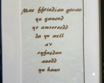 """Framed """"Mae Ffrindiau Gorau..."""" (Best Friends...) Gift"""