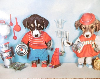 Vintage kitsch 1964 postcard - colour photograph dogs  dressed up