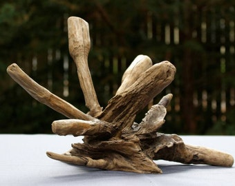 Driftwood Art Work, Driftwood Home Decor, Driftwood Art