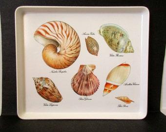 Sea Shells Serving TrayPlatter, Ocean Beach Island Bar Kitch Decor, Mebel Melamine Tray, Nautilus Voluita Scallop Shell, Pool Patio Outdoors