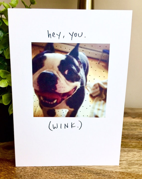 You're the coolest Card, Funny Just Because card, Boston Terrier Card, hey you, wink card, cute hello card