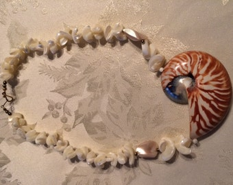 Tiger Chambered Nautilus Polished Shell Necklace