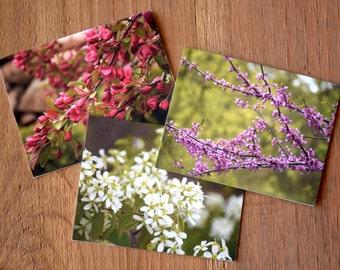 Spring Bloom Note Cards Set