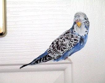Wall sticker budgie, bird decals, budgie, light switch decals, blue budgie, bird wall sticker, bird home decor, cute budgie