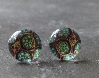 Green algal cell stud earrings