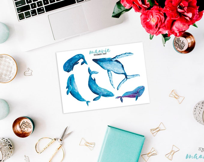Sticker set with Whale designs / whale stickers
