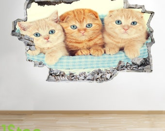 Cute Kittens Wall Sticker 3d Look - Bedroom Lounge Nature Animal Wall Decal Z295