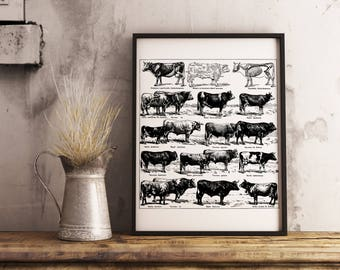 Vintage Cow Print Rustic Wall Decor for Kitchen, Printable Cow Wall Art for Kitchen, Rustic Kitchen Prints, Cow Art Kitchen Printable Poster