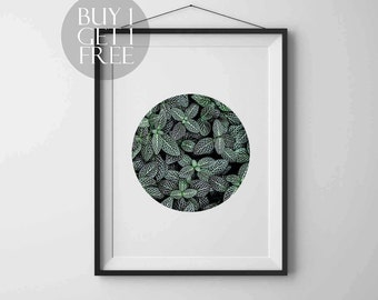 Plant print Circle print Nature Photography Instant download Printable art Wall art Nature poster Modern art
