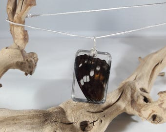 Real Butterfly Wing Wire-Wrapped Necklace / Authentic Taxidermy Jewelry