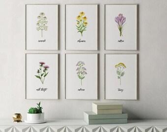 Herb Prints, Kitchen Decor, Botanical Print Set, Unique Botanical Prints, Home Decor, Wall Decor, Dining Room Decor, Garden Decor, Floral