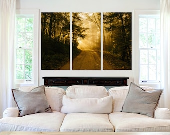 Road through the Forest  - Canvas Art